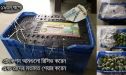 Photo Of Rajshahi Mango, VIP Smart Packeging, Chapai Nawabganj Mango Pack , Rajshahir Aam, Formalin Chemical Free Fozli (19)