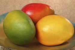 mango_beauty_three_colors_in_bowl